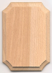 Mini Hardwood Plaque - 2-1/2 x 3-1/2 inch. by 1/4 inch thick - 12 pieces