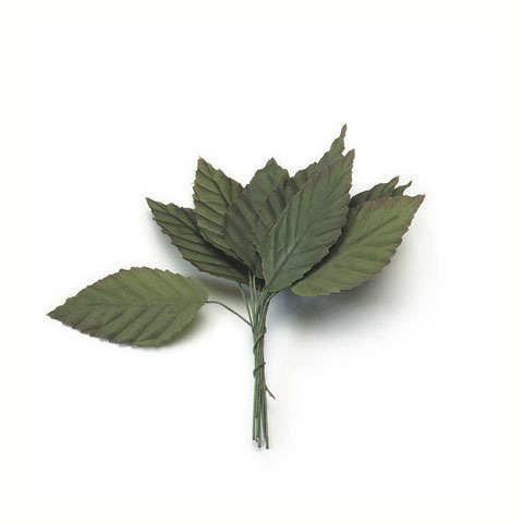 Small Rose Leaf - Green - 1-1/4 x 2-1/2 inches - 12 pieces
