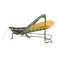 3-1/2 inch Grasshopper