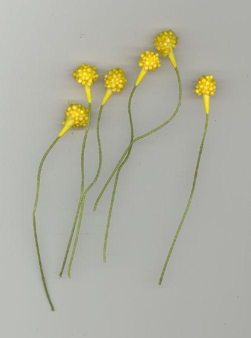 Mum Center - Yellow - 3/8 inch head - 144 pieces
