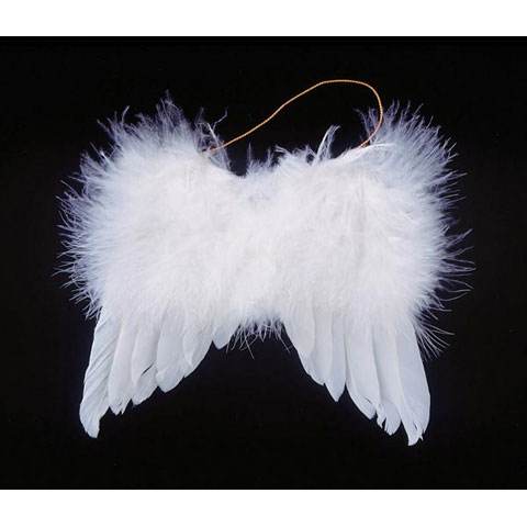Angel Wings - White Feather - 5 in