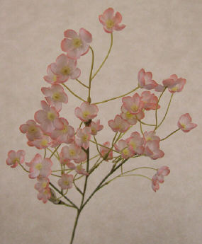 Almond Blossom - Pink - 12 Pieces