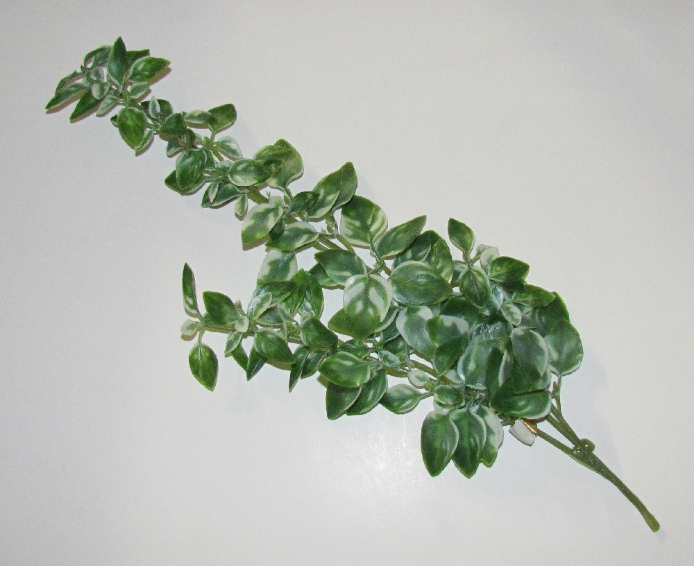 White/Green Vinca Vine - 16 inch - 12 pieces
