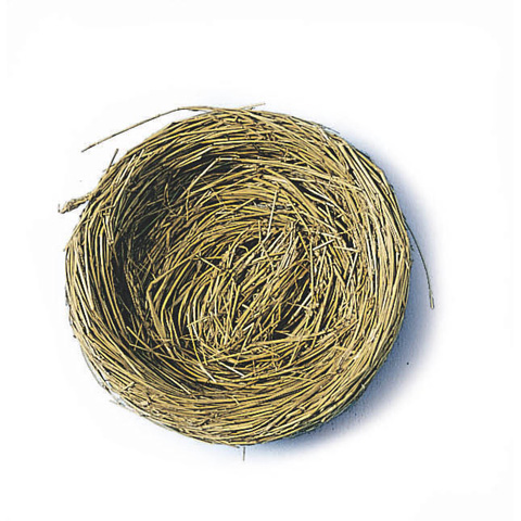 Bird Nest - 3 inches