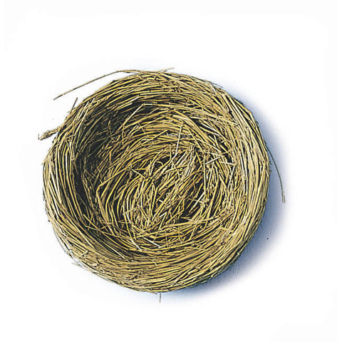 Robin Nest - 2-1/4 inches